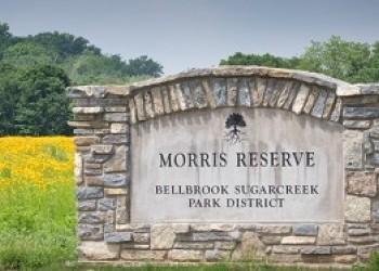 Morris Reserve